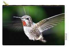 Juvenile Red Thoated Hummingbird Carry-all Pouch