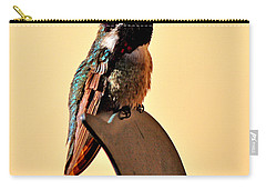 Carry-all Pouch featuring the photograph Juvenile Rufus Hummingbird Sitting It Out by Jay Milo