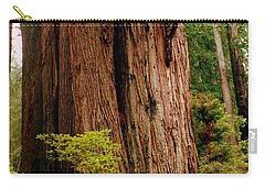 Kevin And The Big Tree - Redwood National Forest Carry-all Pouch