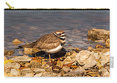 Kildeer On The Rocks Carry-all Pouch by Robert Frederick