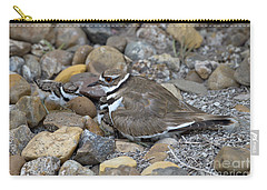 Killdeer And Young Carry-all Pouch