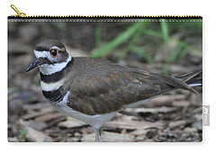 Killdeer Carry-all Pouch by Dan Sproul