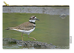 Killdeer Walking Carry-all Pouch by Sharon Talson