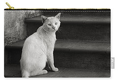 Kimba Carry-all Pouch