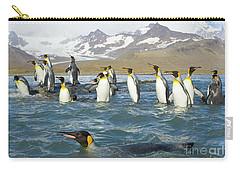 King Penguins Swimming St Andrews Bay Carry-all Pouch by Yva Momatiuk John Eastcott
