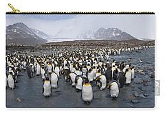 King Penguins Aptenodytes Patagonicus Carry-all Pouch