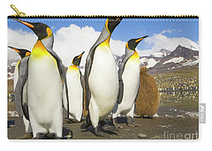 King Penguins At St Andrews Bay Carry-all Pouch by Yva Momatiuk and John Eastcott