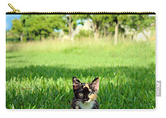 Carry-all Pouch featuring the photograph Kitten by Carsten Reisinger