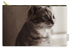 Kitten In The Light Carry-all Pouch