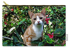 Kitten Carry-all Pouch by Pamela Walton