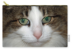 Carry-all Pouch featuring the photograph Kitty by Aimee L Maher Photography and Art Visit ALMGallerydotcom
