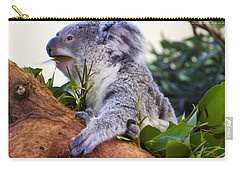 Koala Eating In A Tree Carry-all Pouch by Chris Flees