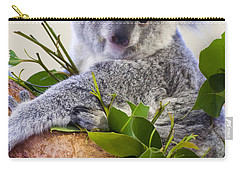 Koala On Top Of A Tree Carry-all Pouch by Chris Flees