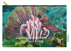 Komodo Island 6 Carry-all Pouch by David Beebe