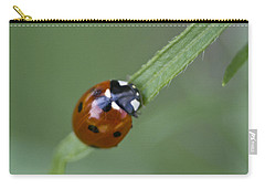 Lady Bug Close Up Carry-all Pouch by Shelly Gunderson