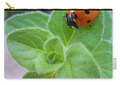 Carry-all Pouch featuring the photograph Ladybug And Oregano by Robert ONeil