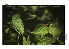 Carry-all Pouch featuring the photograph Ladybug by Bradley R Youngberg