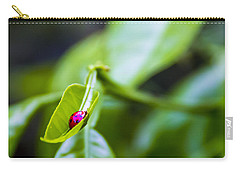 Ladybug Cup Carry-all Pouch by Marvin Spates