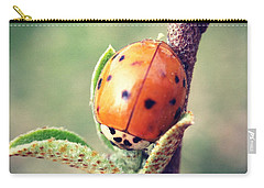 Carry-all Pouch featuring the photograph Ladybug  by Kerri Farley