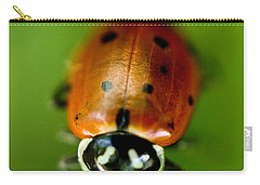 Ladybug On Green Carry-all Pouch by Iris Richardson
