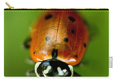 Ladybug On Leaf Carry-all Pouch