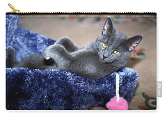 Carry-all Pouch featuring the photograph Laid Back by Sally Weigand