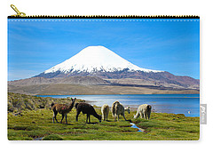 Lake Chungara Chilean Andes Carry-all Pouch