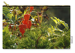Carry-all Pouch featuring the photograph Lantern Plant by Brenda Brown