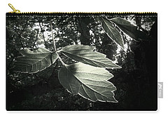 Last Rays II Carry-all Pouch