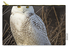 Late Season Snowy Owl Carry-all Pouch