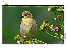 Late Summer Finch Carry-all Pouch