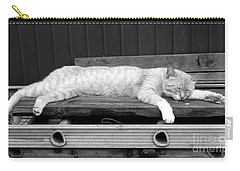 Carry-all Pouch featuring the photograph Lazy Cat by Andrea Anderegg