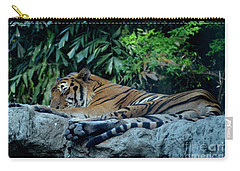 Carry-all Pouch featuring the photograph Lazy Cat by Michelle Meenawong