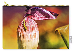 Carry-all Pouch featuring the photograph Lazy Lizard by The Art of Alice Terrill