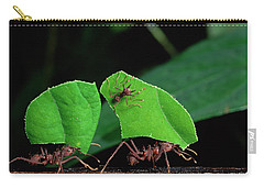 Leafcutter Ant Atta Sp Group Workers Carry-all Pouch by Michael and Patricia Fogden