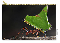 Leafcutter Ant Carry-all Pouch by Francesco Tomasinelli