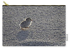 Least Tern Chick Carry-all Pouch by Meg Rousher