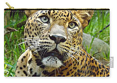 Carry-all Pouch featuring the photograph Leopard Face by Clare Bevan
