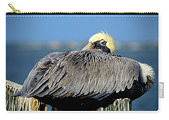 Let Sleeping Pelicans Lie Carry-all Pouch