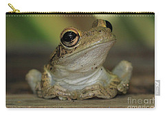 Let's Talk - Cuban Treefrog Carry-all Pouch by Meg Rousher