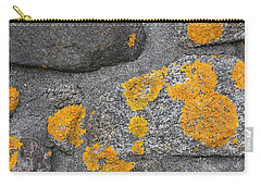 Carry-all Pouch featuring the photograph Lichen Coated Fence Post 2 by Mary Bedy