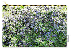 Lincoln Park In Bloom Carry-all Pouch by David Trotter