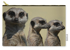 Line Dancing Meerkats Carry-all Pouch