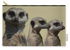 Line Dancing Meerkats Carry-all Pouch