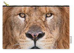 Carry-all Pouch featuring the photograph Lion Close Up by Jerry Fornarotto