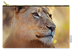 Lioness Portrait Lying In Grass Carry-all Pouch