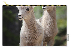 Little Bighorns Carry-all Pouch
