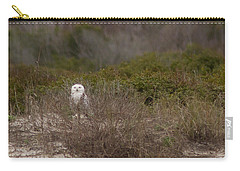 Carry-all Pouch featuring the photograph Little Talbot Snowbird by Paul Rebmann