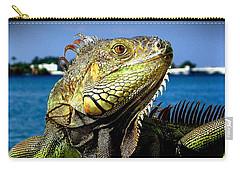 Lizard Sunbathing In Miami Carry-all Pouch