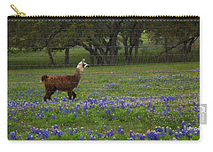 Llama In Bluebonnets Carry-all Pouch by Susan Rovira